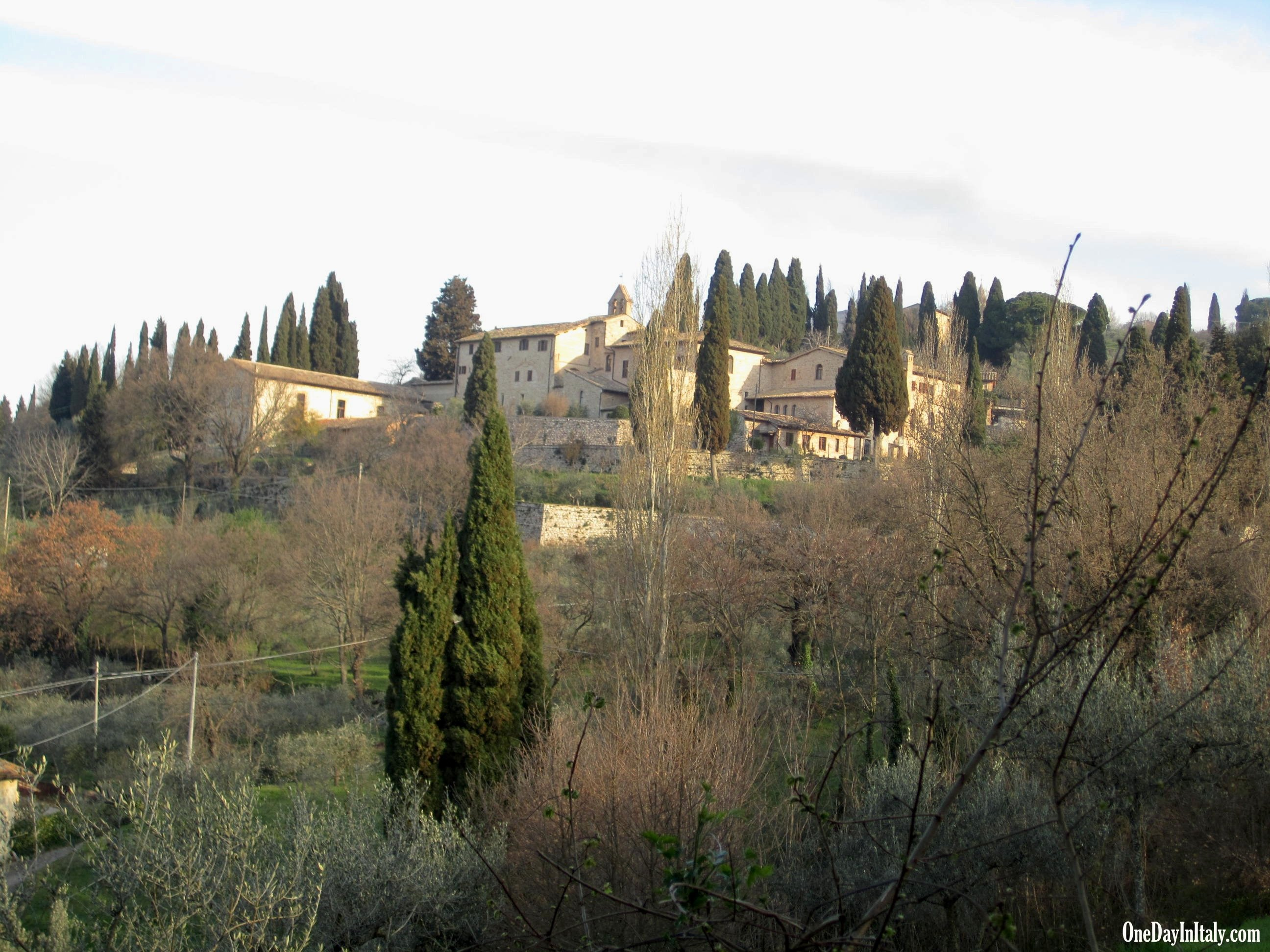 Countryside near San Damiano
