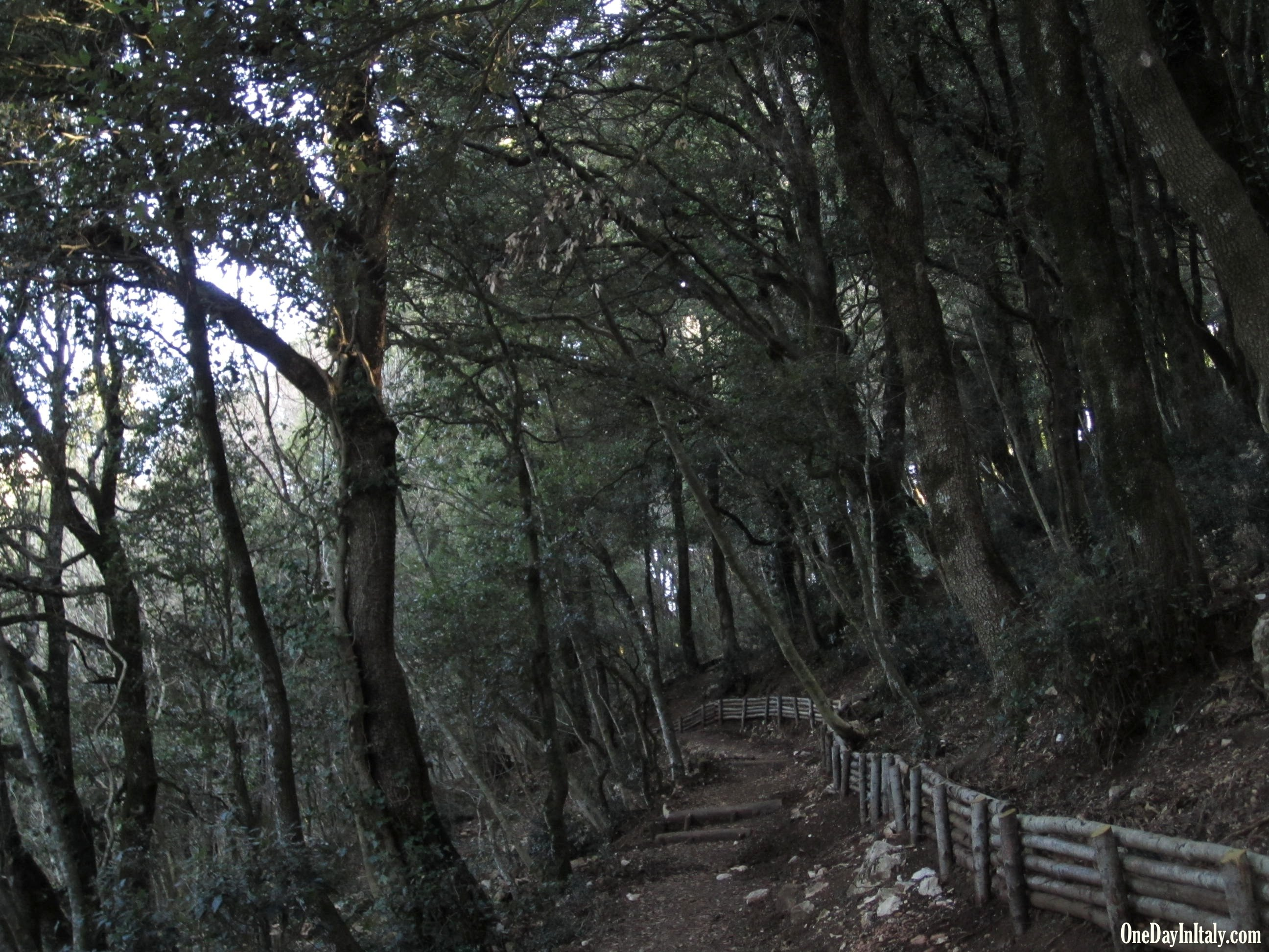 Hiking paths at Eremo delle Carceri